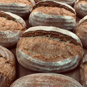 100% whole wheat sourdough batards
